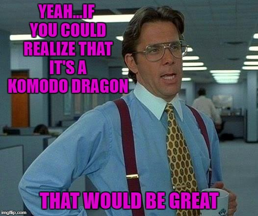 That Would Be Great Meme | YEAH...IF YOU COULD REALIZE THAT IT'S A KOMODO DRAGON THAT WOULD BE GREAT | image tagged in memes,that would be great | made w/ Imgflip meme maker