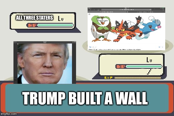 Pokemon Battle | ALL THREE STATERS TRUMP BUILT A WALL | image tagged in pokemon battle | made w/ Imgflip meme maker
