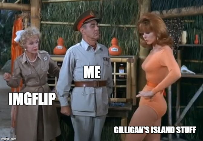 ginger | IMGFLIP ME GILLIGAN'S ISLAND STUFF | image tagged in ginger | made w/ Imgflip meme maker