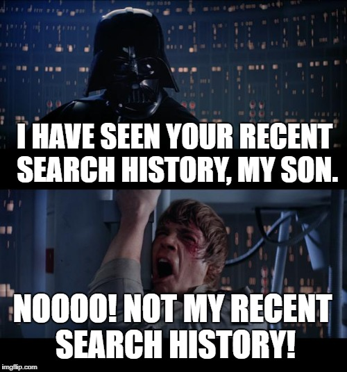 Star Wars No Meme | I HAVE SEEN YOUR RECENT SEARCH HISTORY, MY SON. NOOOO! NOT MY RECENT SEARCH HISTORY! | image tagged in memes,star wars no | made w/ Imgflip meme maker