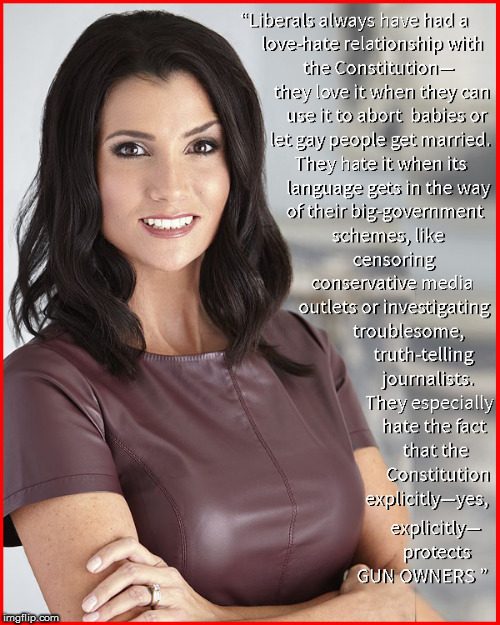 Love Hate Relationship -The Constitution | image tagged in the constitution,dana loesch,nra,girls with guns,current events,political meme | made w/ Imgflip meme maker