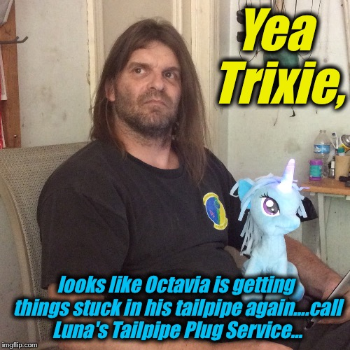 Yea Trixie, looks like Octavia is getting things stuck in his tailpipe again....call Luna's Tailpipe Plug Service... | made w/ Imgflip meme maker