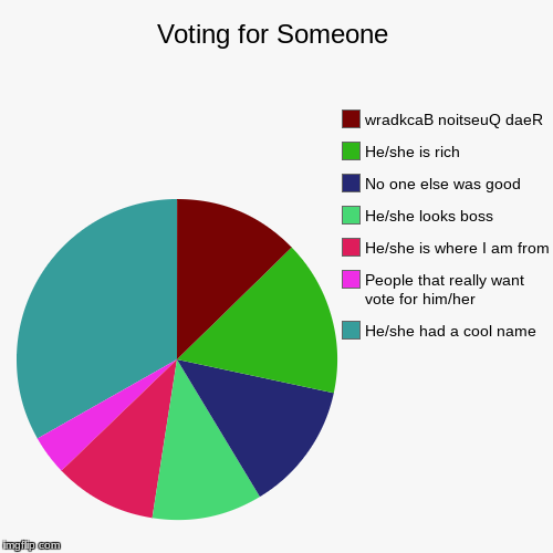 Voting for Someone | He/she had a cool name, People that really want vote for him/her, He/she is where I am from, He/she looks boss, No one  | image tagged in funny,pie charts,voting,random choice,rich | made w/ Imgflip pie chart maker