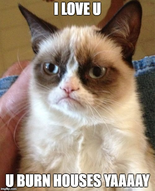 Grumpy Cat Meme | I LOVE U U BURN HOUSES YAAAAY | image tagged in memes,grumpy cat | made w/ Imgflip meme maker
