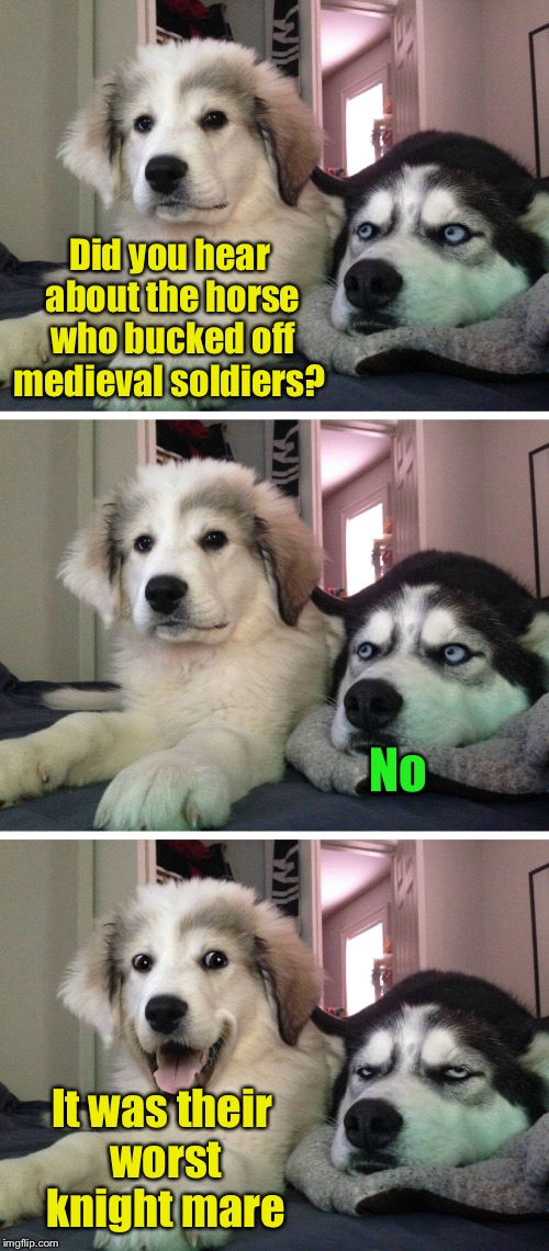 Bad pun dogs | Did you hear about the horse who bucked off medieval soldiers? It was their worst knight mare No | image tagged in bad pun dogs,memes,bad pun,knight,nightmare,horse | made w/ Imgflip meme maker