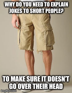 Why do you need to explain jokes to short people? | WHY DO YOU NEED TO EXPLAIN JOKES TO SHORT PEOPLE? TO MAKE SURE IT DOESN'T GO OVER THEIR HEAD | image tagged in short people,explain jokes | made w/ Imgflip meme maker