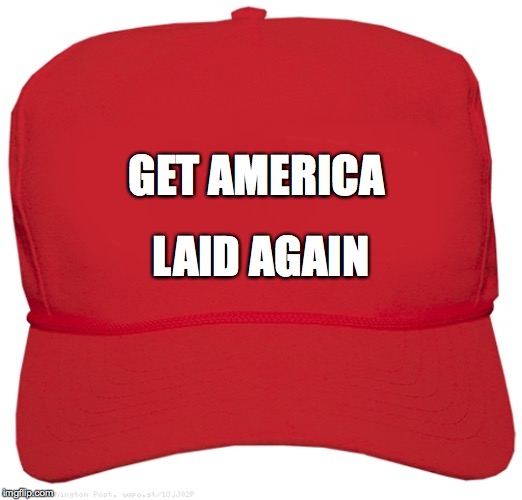 GET AMERICA LAID AGAIN | image tagged in blank red maga hat | made w/ Imgflip meme maker