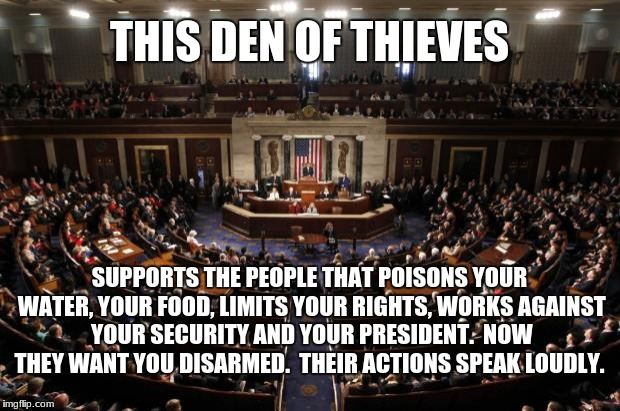congress | THIS DEN OF THIEVES SUPPORTS THE PEOPLE THAT POISONS YOUR WATER, YOUR FOOD, LIMITS YOUR RIGHTS, WORKS AGAINST YOUR SECURITY AND YOUR PRESIDE | image tagged in congress | made w/ Imgflip meme maker