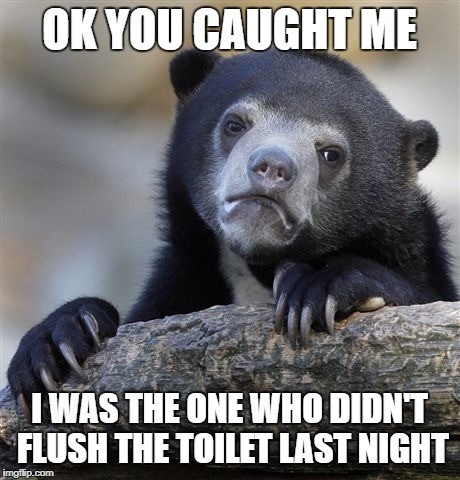 Confession Bear Meme | OK YOU CAUGHT ME I WAS THE ONE WHO DIDN'T FLUSH THE TOILET LAST NIGHT | image tagged in memes,confession bear | made w/ Imgflip meme maker