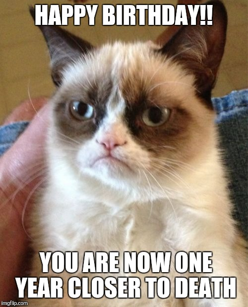 Grumpy Cat Meme | HAPPY BIRTHDAY!! YOU ARE NOW ONE YEAR CLOSER TO DEATH | image tagged in memes,grumpy cat | made w/ Imgflip meme maker