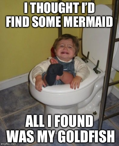 Baby got stuck in the toilet |  I THOUGHT I'D FIND SOME MERMAID; ALL I FOUND WAS MY GOLDFISH | image tagged in stuck in the toilet,meme | made w/ Imgflip meme maker