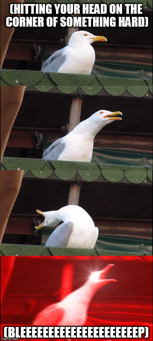 Inhaling Seagull Meme | (HITTING YOUR HEAD ON THE CORNER OF SOMETHING HARD) (BLEEEEEEEEEEEEEEEEEEEEEP) | image tagged in memes,inhaling seagull | made w/ Imgflip meme maker