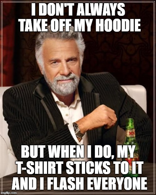 Free Show | I DON'T ALWAYS TAKE OFF MY HOODIE BUT WHEN I DO, MY T-SHIRT STICKS TO IT AND I FLASH EVERYONE | image tagged in memes,the most interesting man in the world,hoodie,flash | made w/ Imgflip meme maker