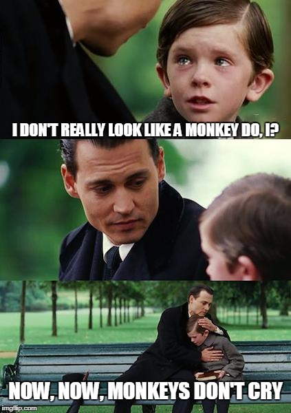 Finding Neverland Meme | I DON'T REALLY LOOK LIKE A MONKEY DO, I? NOW, NOW, MONKEYS DON'T CRY | image tagged in memes,finding neverland | made w/ Imgflip meme maker
