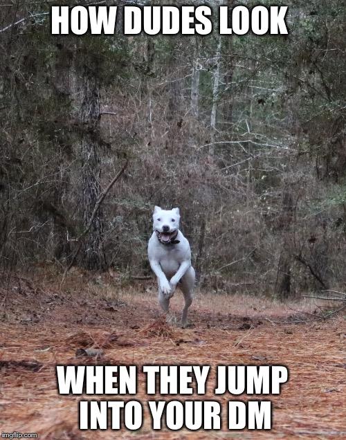HOW DUDES LOOK WHEN THEY JUMP INTO YOUR DM | image tagged in memes,facebook,funny | made w/ Imgflip meme maker