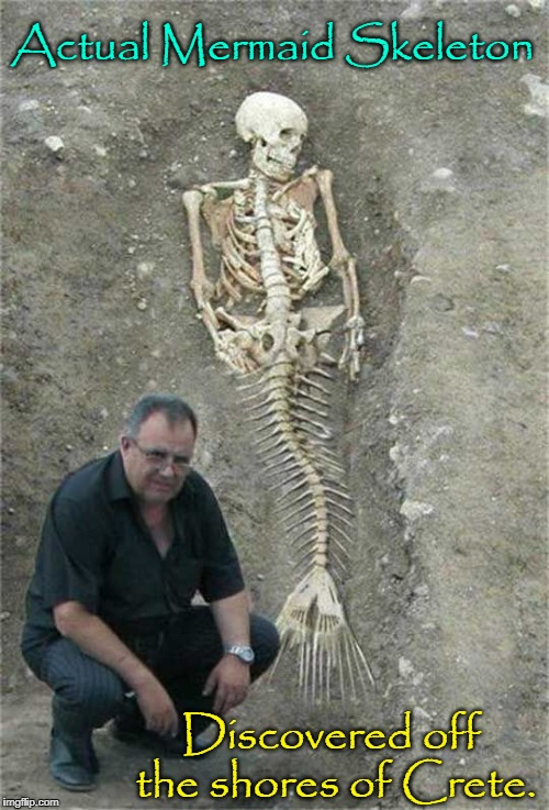 Now, do you believe in Mermaids?! | Actual Mermaid Skeleton Discovered off the shores of Crete. | image tagged in mermaid skeleton,vince vance,scientist unearths skeletal remains,of mermaid,atlantis,fossilized skeleton of mermaid | made w/ Imgflip meme maker