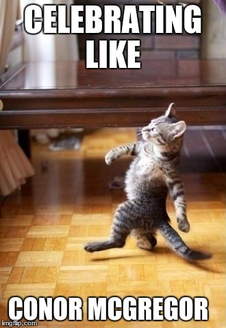 Cool Cat Stroll Meme | CELEBRATING LIKE CONOR MCGREGOR | image tagged in memes,cool cat stroll | made w/ Imgflip meme maker