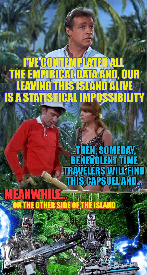 Ain't Nobody Got Time For That (Gilligan's Island Week) | I'VE CONTEMPLATED ALL THE EMPIRICAL DATA AND, OUR LEAVING THIS ISLAND ALIVE IS A STATISTICAL IMPOSSIBILITY ON THE OTHER SIDE OF THE ISLAND M | image tagged in gilligan's island,gilligans island week,gilligans island,terminator,time travel,meanwhile | made w/ Imgflip meme maker