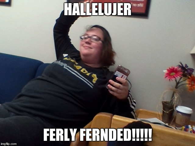 Fully Funded | HALLELUJER FERLY FERNDED!!!!! | image tagged in money money | made w/ Imgflip meme maker