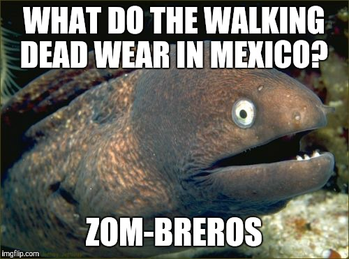 Straight out of a Halloween-themed kids joke book, I know.  | WHAT DO THE WALKING DEAD WEAR IN MEXICO? ZOM-BREROS | image tagged in memes,bad joke eel,zombies,the walking dead,mexico | made w/ Imgflip meme maker