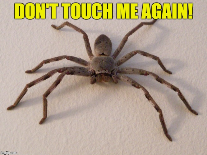 DON'T TOUCH ME AGAIN! | made w/ Imgflip meme maker