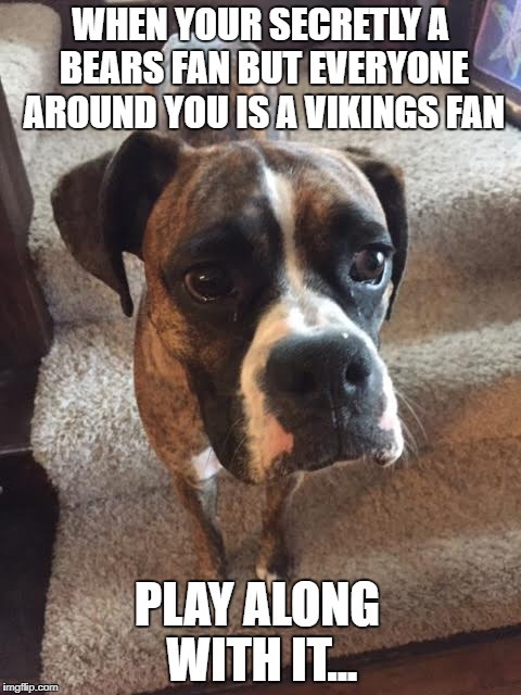 Moses Meme | WHEN YOUR SECRETLY A BEARS FAN BUT EVERYONE AROUND YOU IS A VIKINGS FAN PLAY ALONG WITH IT... | image tagged in angry old moses | made w/ Imgflip meme maker