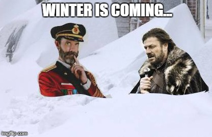 Thanks for the info... | WINTER IS COMING... | image tagged in ned stark,captain obvious,job security,snowstorm,whiteout | made w/ Imgflip meme maker