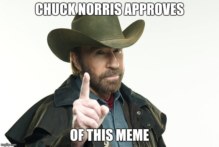 CHUCK NORRIS APPROVES OF THIS MEME | image tagged in funny memes | made w/ Imgflip meme maker