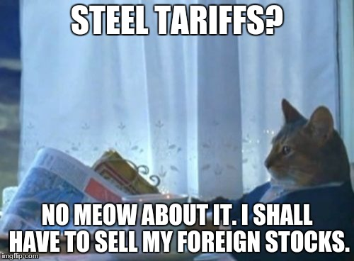 I Should Buy A Boat Cat Meme | STEEL TARIFFS? NO MEOW ABOUT IT. I SHALL HAVE TO SELL MY FOREIGN STOCKS. | image tagged in memes,i should buy a boat cat | made w/ Imgflip meme maker