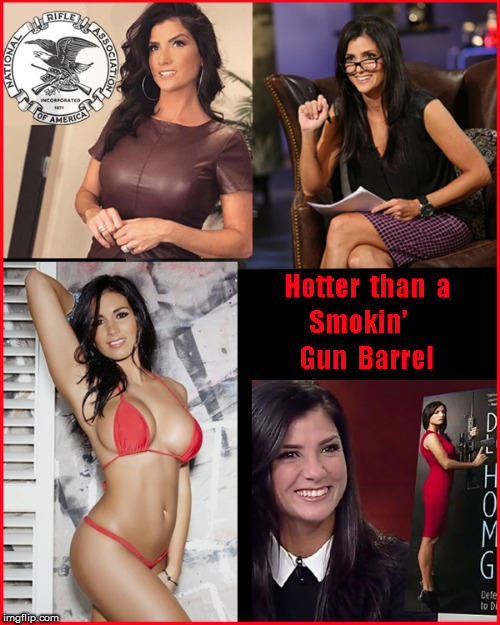 Dana Loesch- Hotter than hell | image tagged in dana loesch-,girls with guns,nra,current events,political meme,hot babes | made w/ Imgflip meme maker