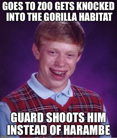 Bad Luck Brian Meme | GOES TO ZOO GETS KNOCKED INTO THE GORILLA HABITAT GUARD SHOOTS HIM INSTEAD OF HARAMBE | image tagged in memes,bad luck brian | made w/ Imgflip meme maker