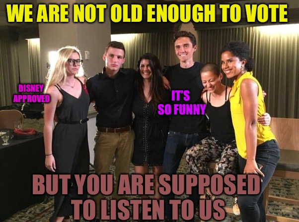 Life Crisis Laughter | WE ARE NOT OLD ENOUGH TO VOTE BUT YOU ARE SUPPOSED TO LISTEN TO US IT'S SO FUNNY DISNEY APPROVED | image tagged in david hogg crisis actor,disney,punk,gay,florida,scumbag | made w/ Imgflip meme maker