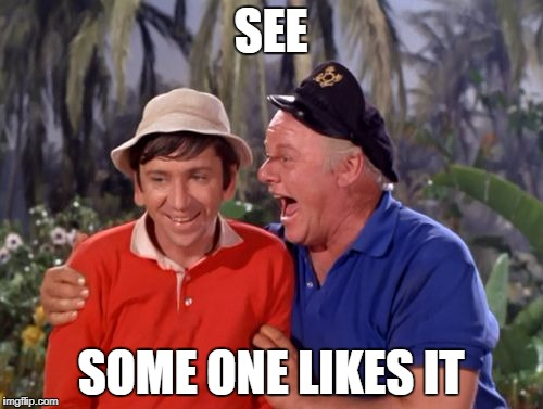 gilligan | SEE SOME ONE LIKES IT | image tagged in gilligan | made w/ Imgflip meme maker