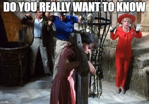 gilligan | DO YOU REALLY WANT TO KNOW | image tagged in gilligan | made w/ Imgflip meme maker