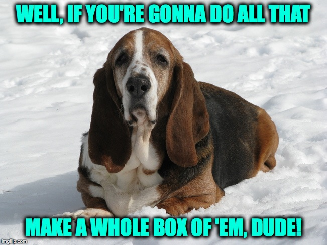 WELL, IF YOU'RE GONNA DO ALL THAT MAKE A WHOLE BOX OF 'EM, DUDE! | made w/ Imgflip meme maker