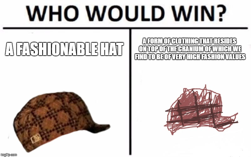 Who Would Win? Meme | A FASHIONABLE HAT A FORM OF CLOTHING THAT RESIDES ON TOP OF THE CRANIUM OF WHICH WE FIND TO BE OF VERY HIGH FASHION VALUES | image tagged in memes,who would win,scumbag | made w/ Imgflip meme maker