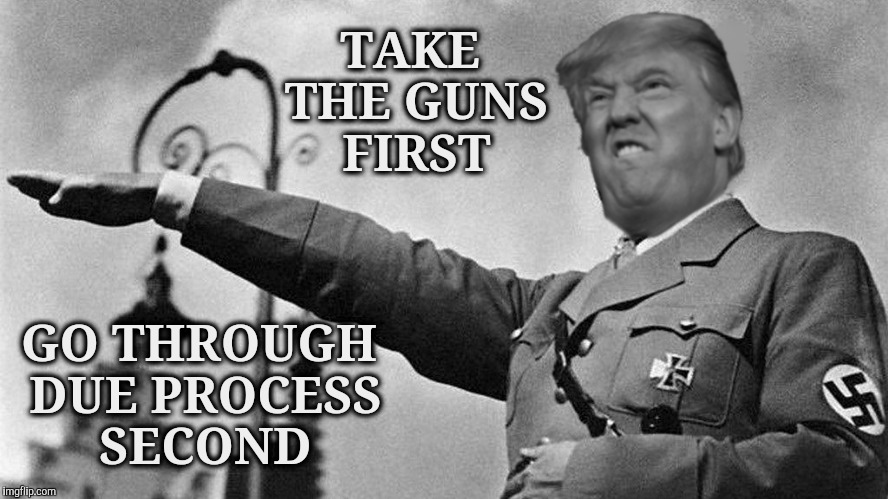 TAKE THE GUNS FIRST GO THROUGH DUE PROCESS SECOND | image tagged in donald trump hitler | made w/ Imgflip meme maker