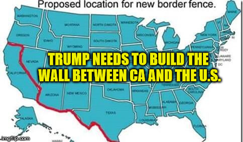 Something is seriously wrong with these people! | TRUMP NEEDS TO BUILD THE WALL BETWEEN CA AND THE U.S. | image tagged in wall california,memes,donald trump | made w/ Imgflip meme maker