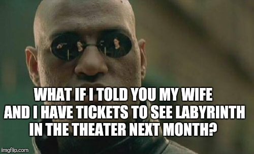 Matrix Morpheus Meme | WHAT IF I TOLD YOU MY WIFE AND I HAVE TICKETS TO SEE LABYRINTH IN THE THEATER NEXT MONTH? | image tagged in memes,matrix morpheus | made w/ Imgflip meme maker