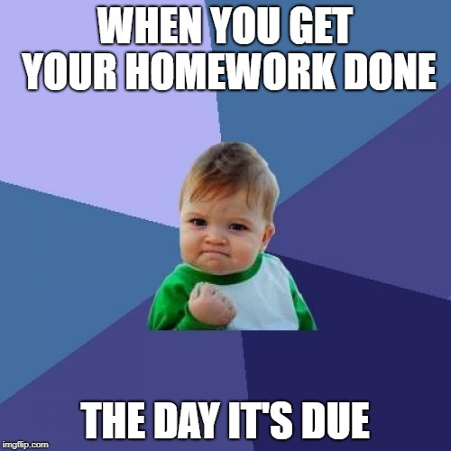 Success Kid Meme | WHEN YOU GET YOUR HOMEWORK DONE THE DAY IT'S DUE | image tagged in memes,success kid | made w/ Imgflip meme maker