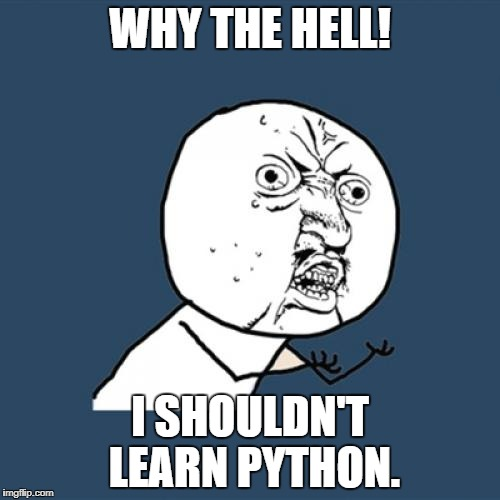 Y U No Meme | WHY THE HELL! I SHOULDN'T LEARN PYTHON. | image tagged in memes,y u no | made w/ Imgflip meme maker