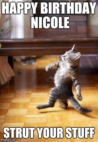 Cool Cat Stroll Meme | HAPPY BIRTHDAY NICOLE STRUT YOUR STUFF | image tagged in memes,cool cat stroll | made w/ Imgflip meme maker