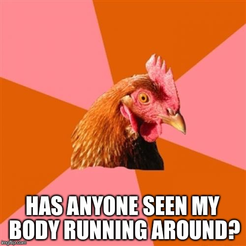 Chicken with head cut off | HAS ANYONE SEEN MY BODY RUNNING AROUND? | image tagged in chicken,funny memes,running,joke | made w/ Imgflip meme maker