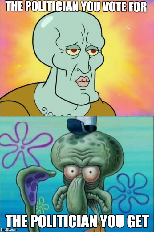 Squidward Meme | THE POLITICIAN YOU VOTE FOR THE POLITICIAN YOU GET | image tagged in memes,squidward | made w/ Imgflip meme maker