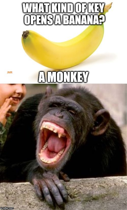 There you have it. lol | WHAT KIND OF KEY OPENS A BANANA? A MONKEY | image tagged in banana monkey,jokes,humor | made w/ Imgflip meme maker