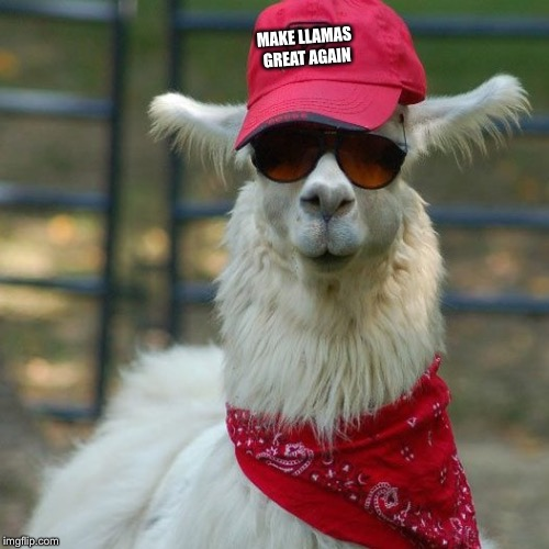 Llama Trump |  MAKE LLAMAS GREAT AGAIN | image tagged in trump,red,llama,white,republican,memes | made w/ Imgflip meme maker