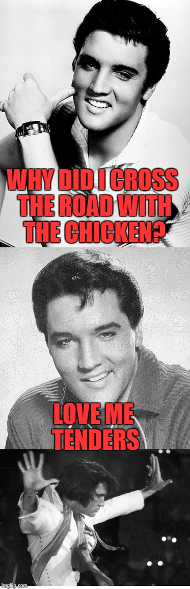 Music Week submission | WHY DID I CROSS THE ROAD WITH THE CHICKEN? LOVE ME TENDERS | image tagged in music week,elvis presley | made w/ Imgflip meme maker