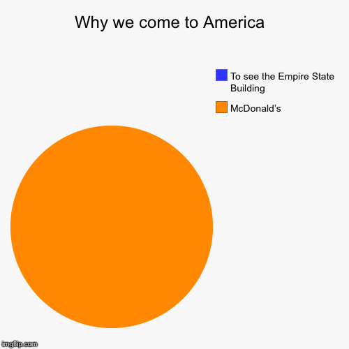 Why we come to America  | McDonald's , To see the Empire State Building | image tagged in funny,pie charts | made w/ Imgflip chart maker