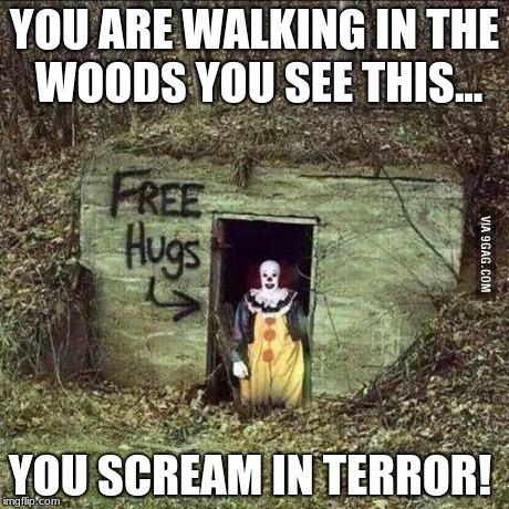 Scary clown | YOU ARE WALKING IN THE WOODS YOU SEE THIS... YOU SCREAM IN TERROR! | image tagged in scary clown | made w/ Imgflip meme maker