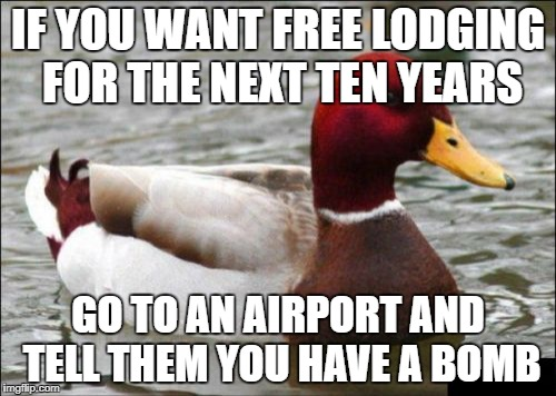 Malicious Advice Mallard | IF YOU WANT FREE LODGING FOR THE NEXT TEN YEARS GO TO AN AIRPORT AND TELL THEM YOU HAVE A BOMB | image tagged in memes,malicious advice mallard | made w/ Imgflip meme maker